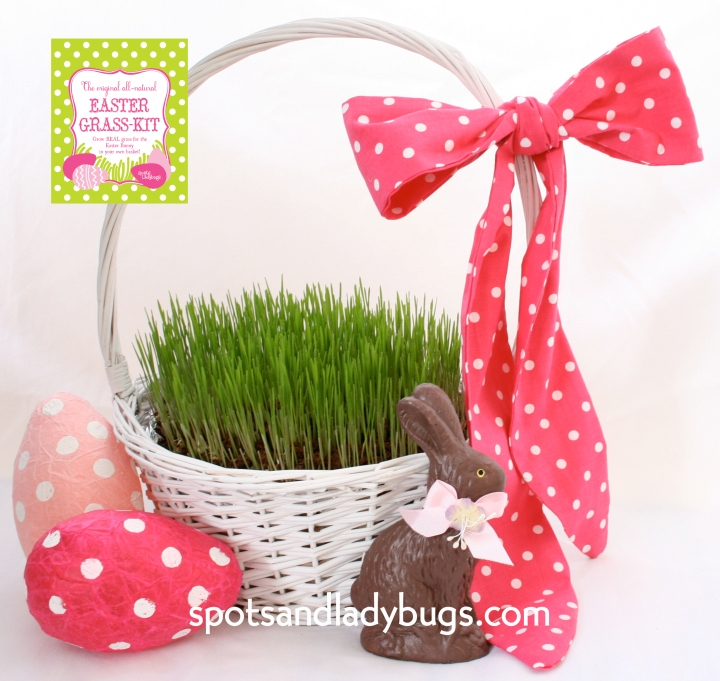 easter-grass-kit_logo